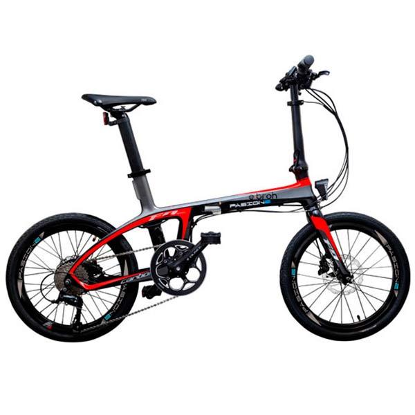 Bicicleta Pasion
